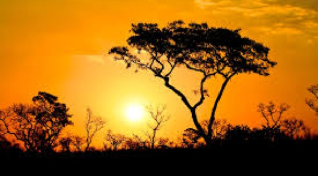 A truly amazing African sunset.